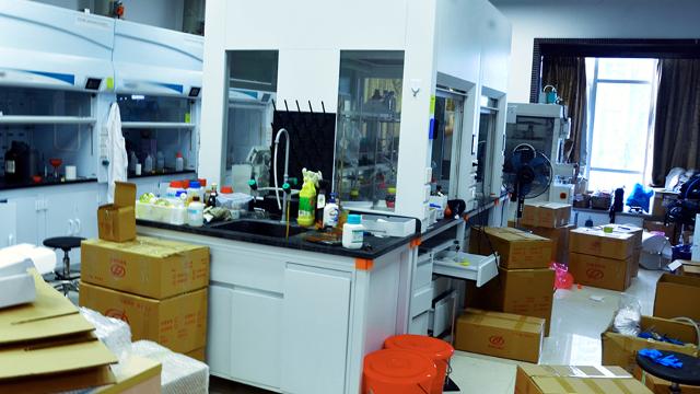 宜都市实验室设备搬迁参与矿山修复